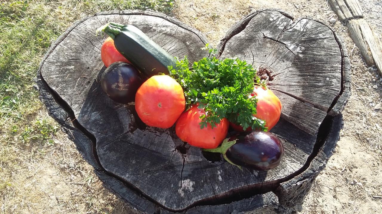 GAGNANTE 31 Légumes sur coeur