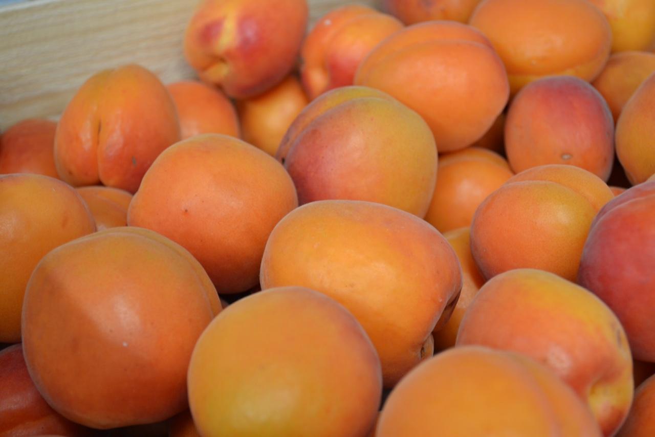 37 Abricots