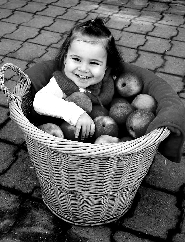 2ème place 8 Pomme d'amour